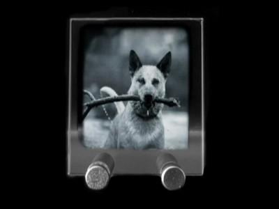 Plaque photo en verticale gravée au laser.