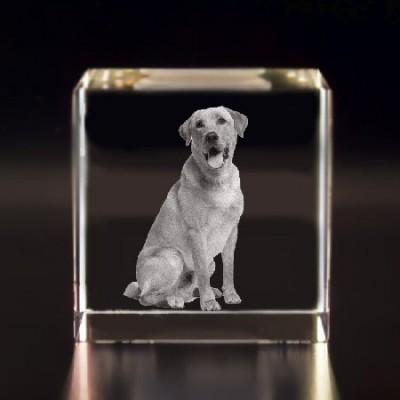 Bloc cubique gravé grand format gravé au laser avec une photo.
