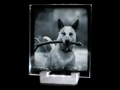 Ensemble support lumineux et plaque photo gravée en verticale.