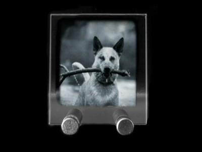 Moyenne plaque photo en verticale gravée au laser.